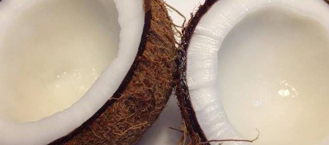 coconut (4) - Copy